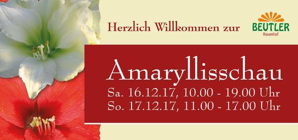 Amaryllisschau 2017